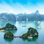 Cosmos   Simply Vietnam