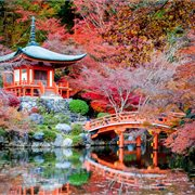 Globus | Discover Japan