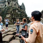 Geckos   The Real Cambodia