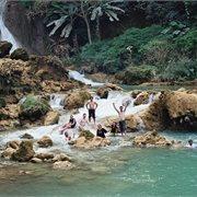 Geckos | Discover Laos