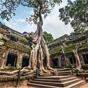 Intrepid   Best of Vietnam & Cambodia