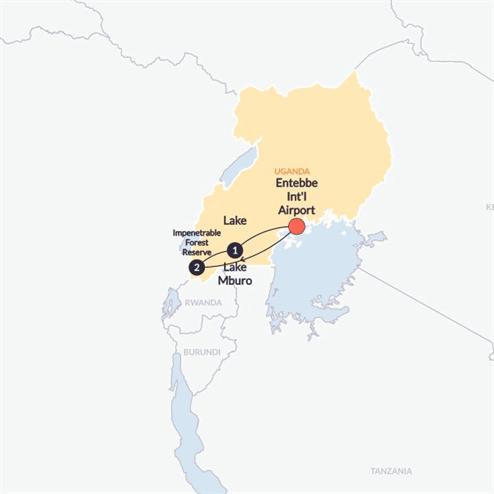 Gorilla Trek(Twin Room,Start Entebbe Int'l Airport, End Entebbe Int'l Airport)