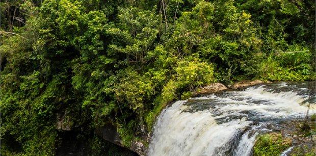 Trafalgar Tours | Queensland Islands and Rainforest Summer 2019