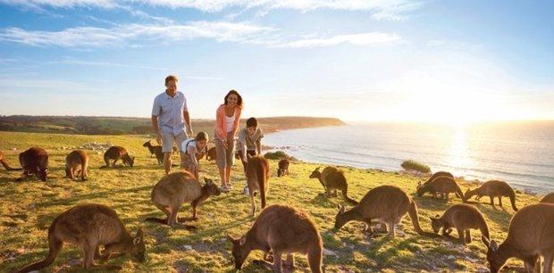 South Australia Hotels
