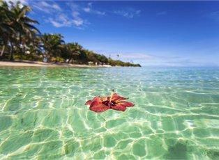 Fiji Princess, Explorer Cruise ex Port Denarau Return