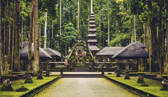 Blog: My Adventures in Bali - and Beyond