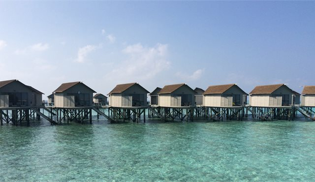 Blog: Love Actually in the Maldives