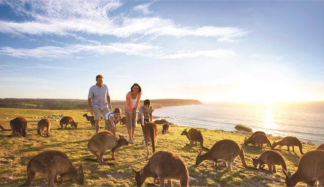 Blog: South Australia