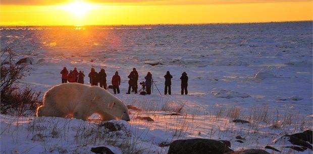 Adventure World Travel | Churchill Town & Tundra