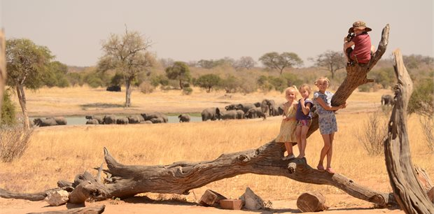 Adventure World Travel | Best of Zimbabwe