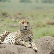 World Journeys | Best of East Africa