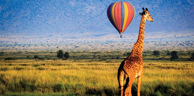 Adventure World - Africa Tours