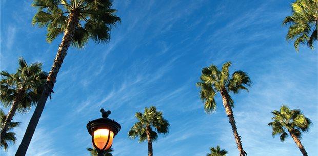 Anaheim Holidays