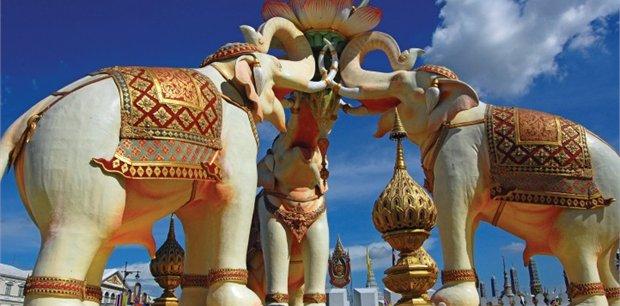 Cosmos   Thailand Experience