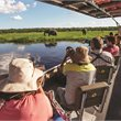 Adventure World Travel | Botswana in Focus