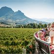 Adventure World Travel | Cape Culinary Experience