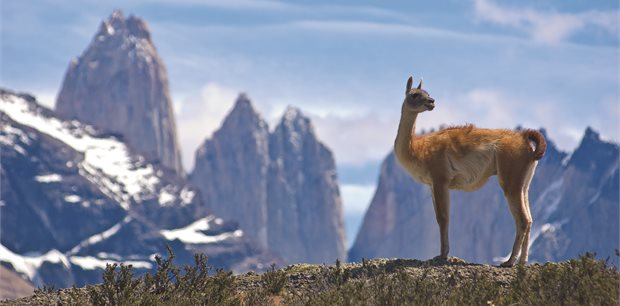 APT | Patagonia & Chilean Fjords