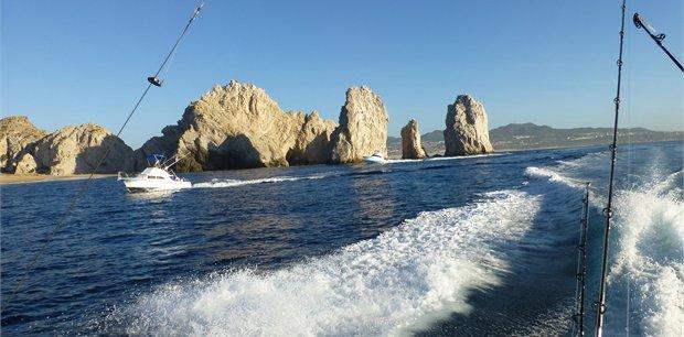 travel&co. | Fish Cabo San Lucas - Mexico