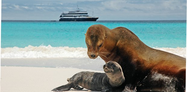Adventure World Travel |  The Galapagos with Lindblad Expeditions-National Geographic