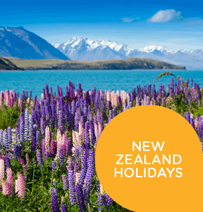 NZ Holidays