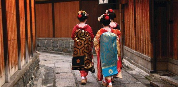 Peregrine | Explore Japan