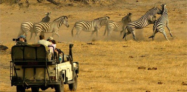 Adventure World Travel   Jewels of Botswana
