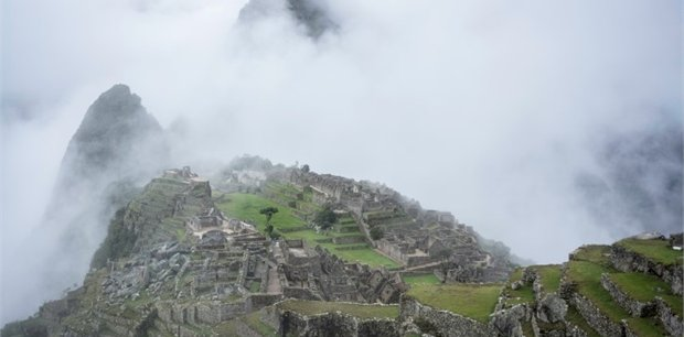 Peregrine   Rhythms of South America