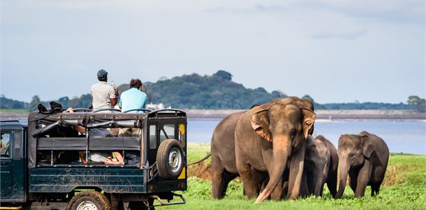 Total Holiday Options | Family Fun in Sri Lanka