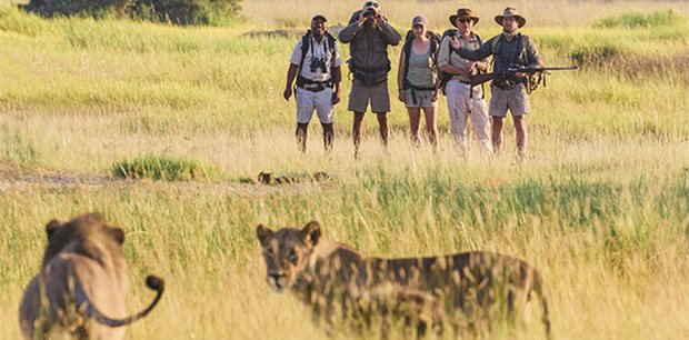 Active Adventures |  Mokoro -  Okavango Delta Safari