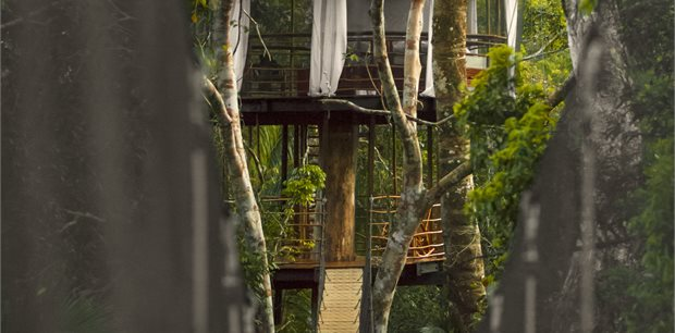 Adventure World Travel | Treehouse Lodge