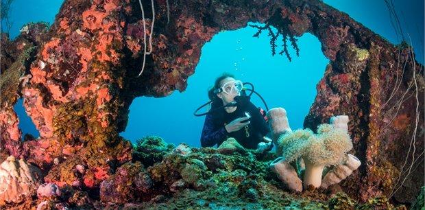 travel&co.   Dive Palau, Micronesia