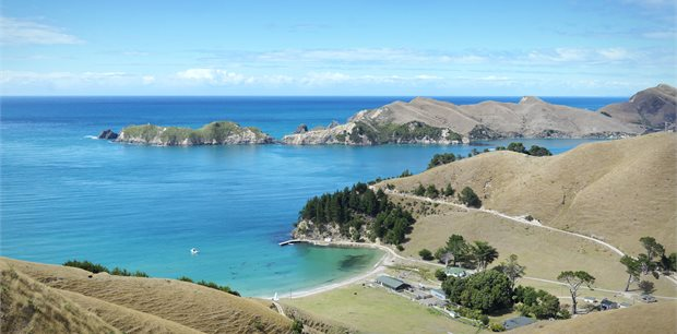 Insight Vacations | Scenic Roads of the South Island - Oct 2020 – Mar 2021