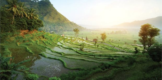 Bali with Air New Zealand - Premium Economy