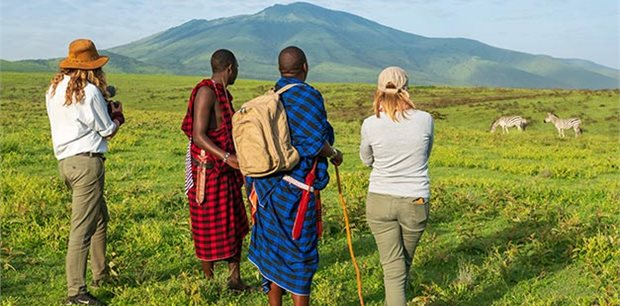 Active Adventures |  Nyumbu -  Serengeti Safari