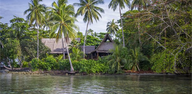 travel&co. | Dive Uepi Package | Solomon Islands
