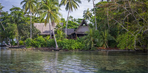 travel&co. | Dive Uepi, Solomon Islands