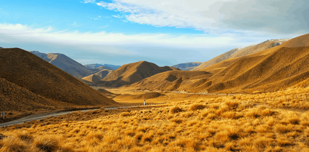 Escorted New Zealand | Southern Stories
