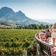 Adventure World Travel | Winelands & Garden Route Self-Drive Safari