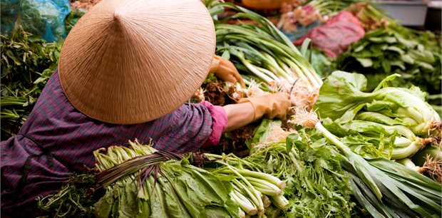 Adventure World Travel | Flavours of Vietnam