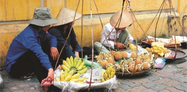 Peregrine | Vietnam Food Explorer