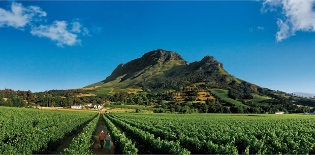 Adventure World Travel | Experience Cape Winelands