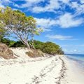 Solstice, South Pacific ex Sydney Return