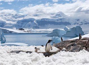 Endeavor, Expedition Antarctica ex Ushuaia Return