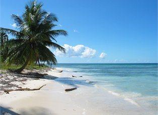 Allure, Western Caribbean Cruise ex Ft Lauderdale Return