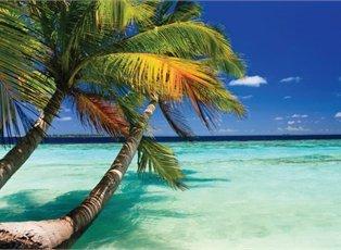 Liberty, Western Caribbean Cruise ex Galveston Return