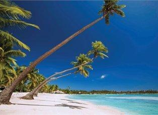 Majestic, Fiji Cruise ex Sydney Return
