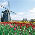 Romantic Rhine - Save up to $5000 per couple