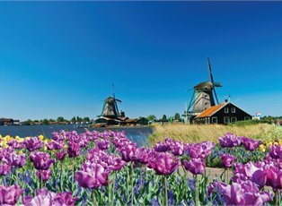 Imagery II, Grand Tulip Cruise of Holland & Belgium ex Amsterdam Return
