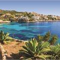 Mediterranean - Free Drinks Package