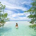 Eastern Caribbean - BOGOHO